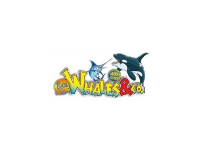 Whales & Co