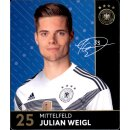 25 - Julian Weigl - REWE WM18 Sammelkarte
