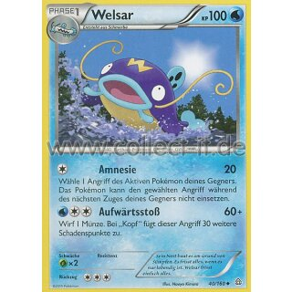 040160 Welsar 099